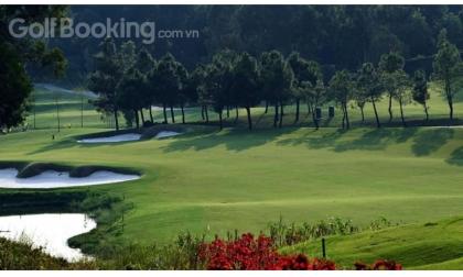 Check-in ngay Thiên đường du lịch golf Đại Lải - Dai Lai Golf Club